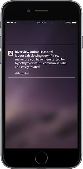 Breed Specific Notifications