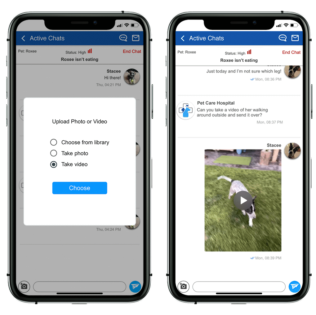 Asynchronous Video App For Vets