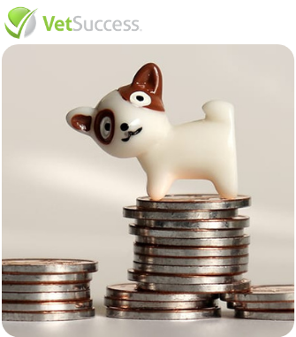 veterinary_contactless_payment