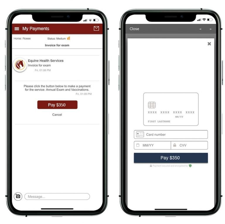 equine app invoicing and payment