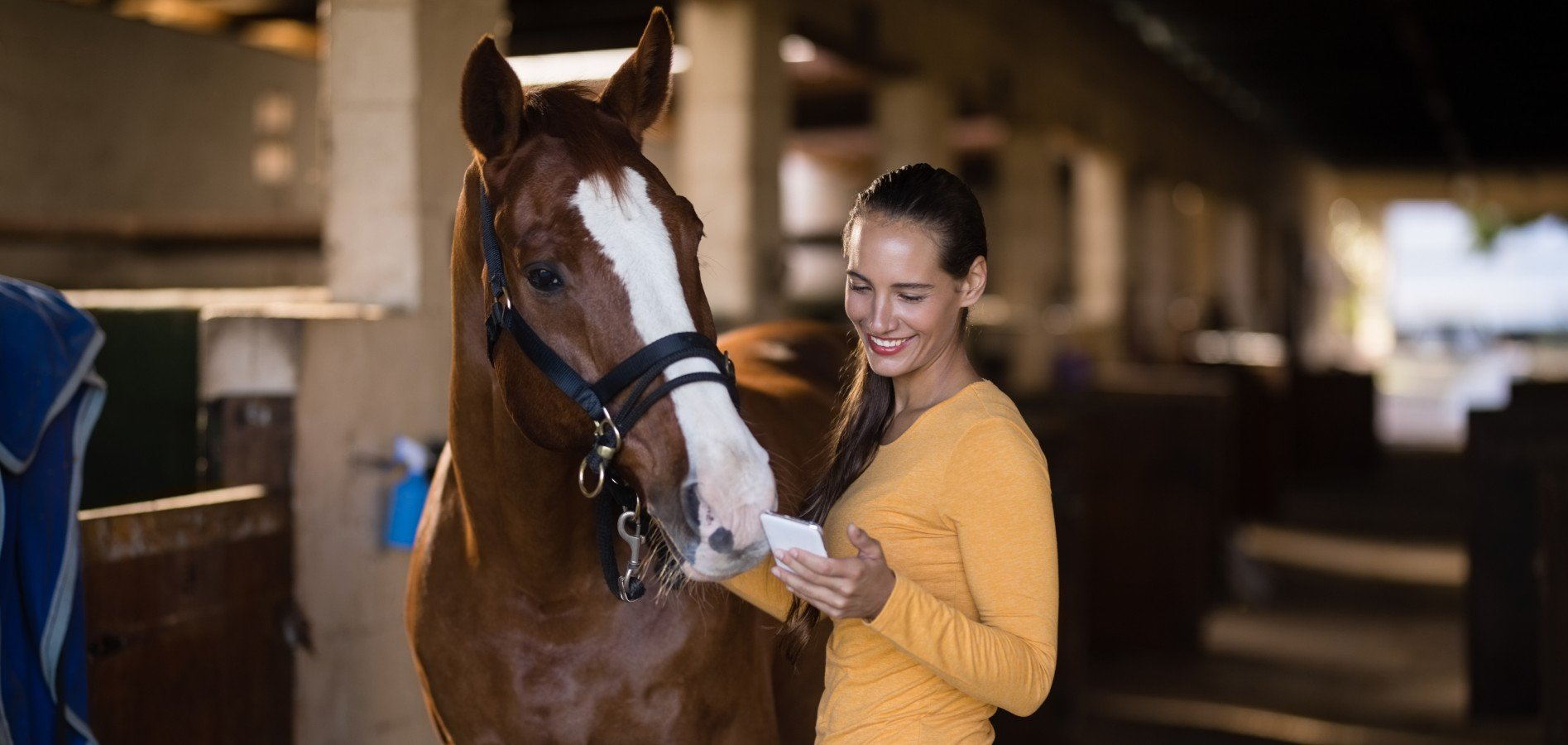 owner using equine mobile app