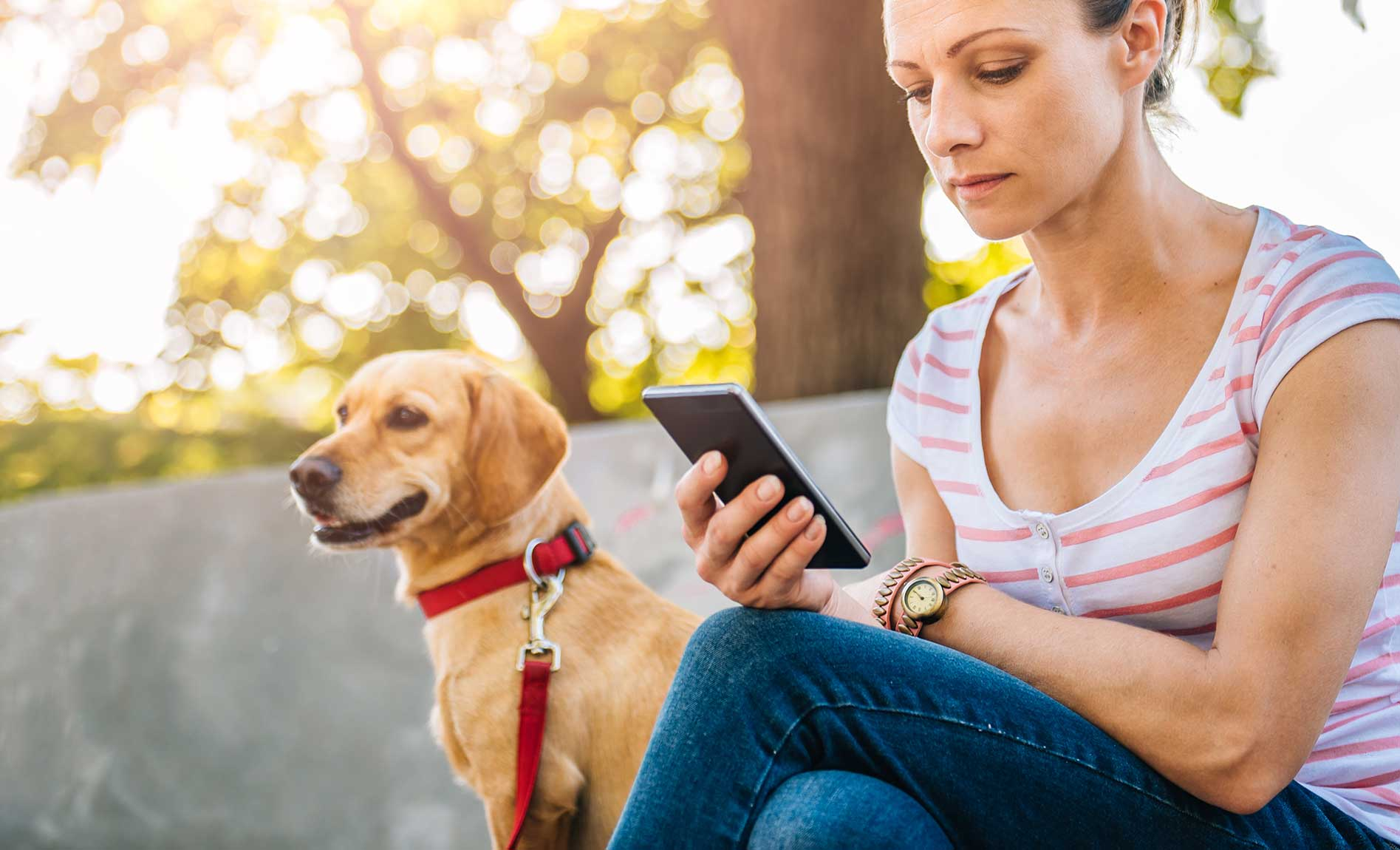 dog with owner using veterinary technology