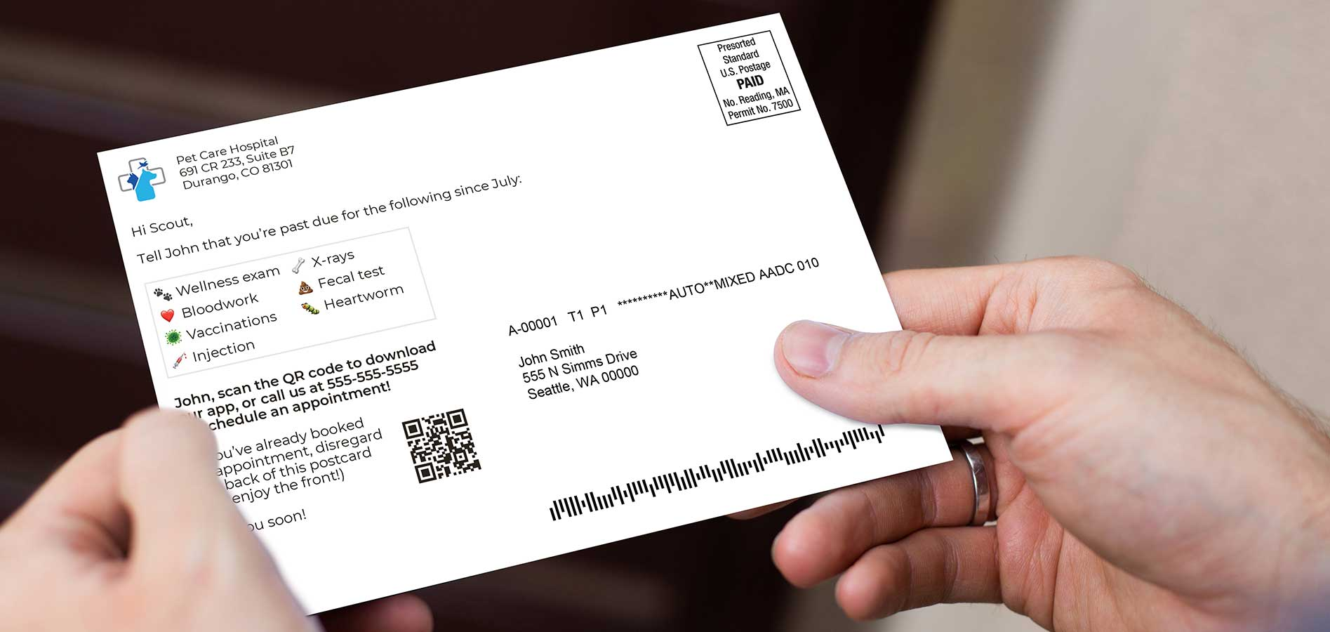 direct mail veterinary postcard reminder