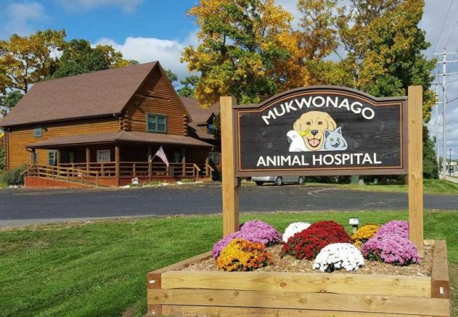 mukwanago-animal-hospital-(5)